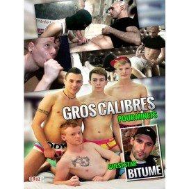 CiteBeur Gros Calibres Pour Minets DVD