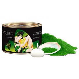 Shunga Sel de Mer moussant Aromatisé Fleur de Lotus 600gr