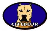 CiteBeur
